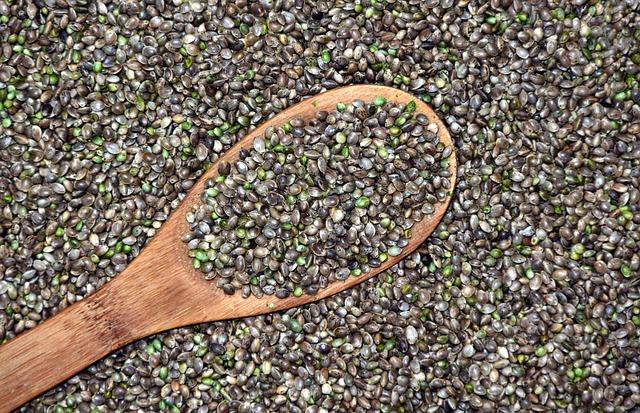 lžíce konopných semen
