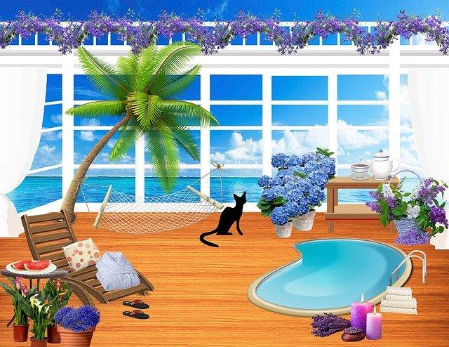 kočka na terase.jpg