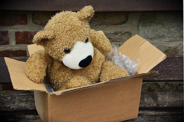 medvěd v krabici.jpg